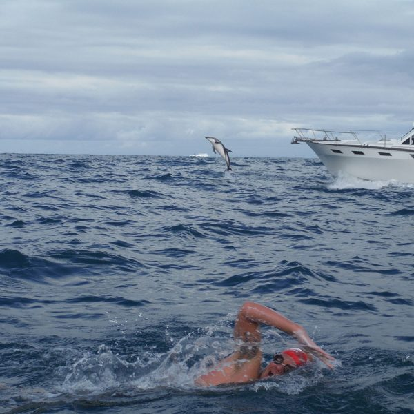 Adam Walker with Dolphin in Cook Strait
